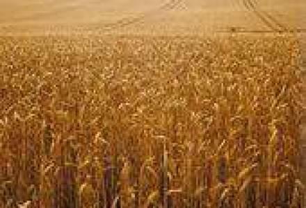 Cel mai greu an agricol din ultimii 25 de ani