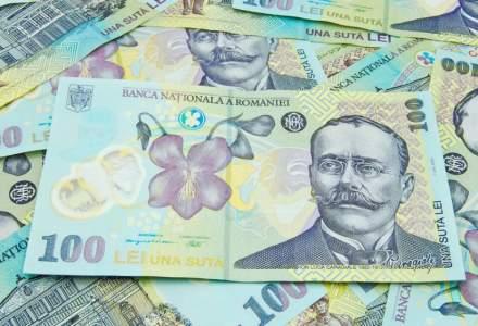 PNL sesizeaza CE si BCE privind interventia politicului in politica monetara din Romania