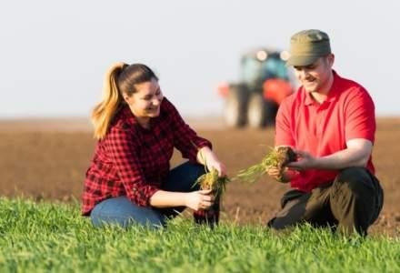 Date oficiale: Cate cereri de subventii pentru agricultura au depus fermierii romani in campania 2018?