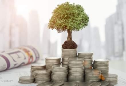 Camelia Dragoi, FEI: Un nou fond de investitii cu capital de risc dedicat startup-urilor si 2-3 destinate companiilor mature vor aparea in Romania in a doua jumatate a anului