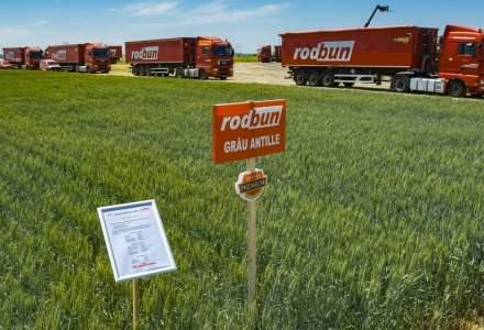 Povestea romanilor care au fondat Rodbun, compania care se bate cu multinationalele pe segmentul solutiilor pentru fermieri