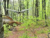 Dino Parc Rasnov, primul parc...
