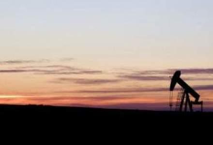 Guvernul conditioneaza incheierea liberalizarii pietei gazelor de evolutia preturilor internationale