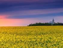 Agricultura, asul din maneca...