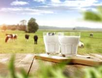 Piata de lactate din Romania:...