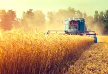 Bursa cerealelor: cum au evoluat preturile la poarta fermei inainte de inceperea recoltarii din 2018