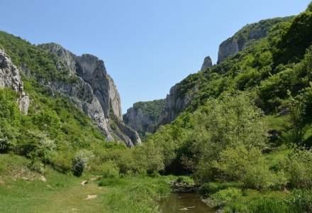 OUG cu dedicatie! Ariile protejate din Romania vor trece din administratiile ONG-urilor de mediu, in administratia Ministerului Mediului