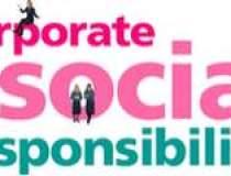 Sectorul public, cel privat,...
