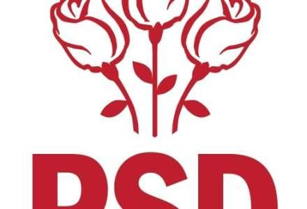Clotilde Armand publica lista copiilor liderilor din PSD angajati in functii din Guvern, Parlament, ambasade sau primarii