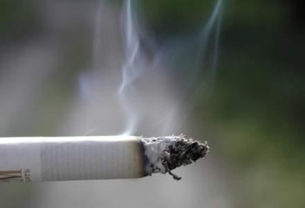 Studiu KPMG: Romania, a cincea cea mai mare piata de contrabanda cu tigari din Europa