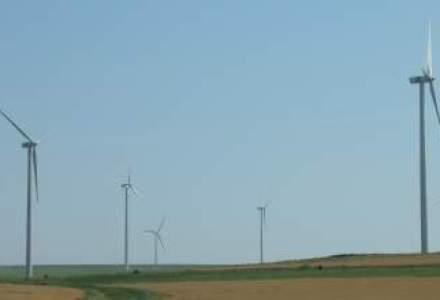 Reportaj din patria eolienelor: Cum functioneaza morile care transforma vantul in energie verde