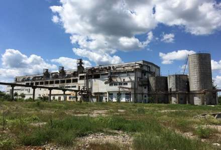 REPORTAJ Povestea decaderii fabricii Letea: de la bijuterie a economiei romanesti la ruina vanduta pe bucati