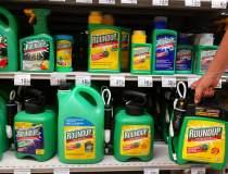 Monsanto, parte a grupului...