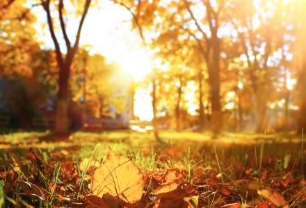 Prognoza ANM: Vreme calduroasa in urmatoarea perioada a lunii septembrie in cea mai mare parte a tarii