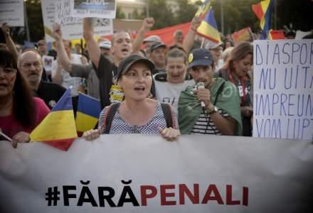 Incredibil: Primarul Aradului, Gheorghe Falca, a invalidat 21.000 de semnaturi Fara Penali