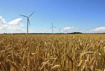 Hunedoara: Peste jumatate din culturi, afectate de seceta; sunt probleme si cu apa pentru populatie