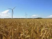 Peste 95.000 hectare de...