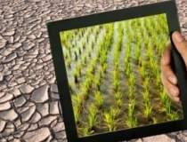 Ghidul anti-seceta: cum ar...