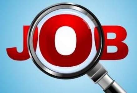 Specialistii in recrutare: Angajarile merg mai bine anul acesta