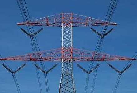 Oamenii de afaceri cer supraimpozitarea producatorilor de gaze si electricitate