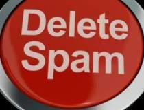 Norton: Infractiunile online...