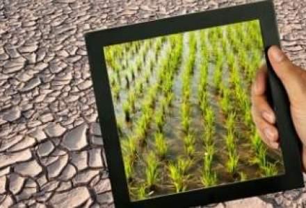 Fermierii afectati de seceta pot depune cererile pentru ajutoare pana pe 15 octombrie