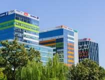 Activ Property Services: 5...
