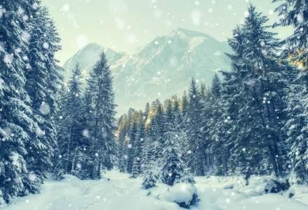 ANM: Craciun cu ninsori slabe si temporare in Transilvania, Maramures si Moldova; strat nou de zapada in Ajun, doar la munte
