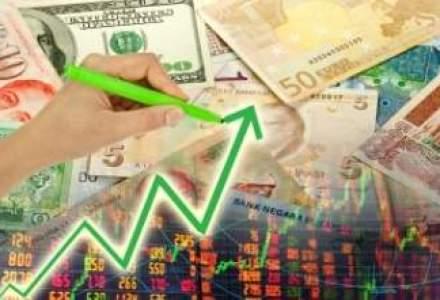 ANEIR: Exporturile pot depasi 50 mld.euro in acest an, dar atingerea tintei depinde de Oltchim si Ford