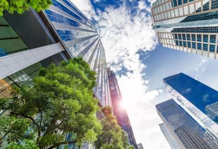Cum influenteaza dezvoltatorii imobiliari economia. 3 aspecte mai putin cunoscute