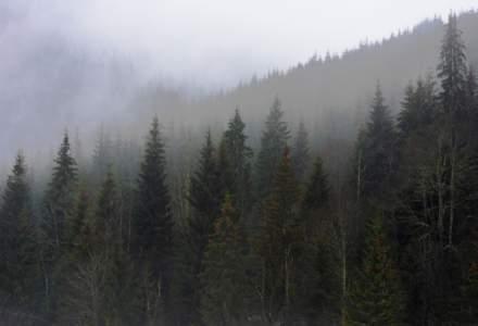 Romsilva, despre planul de management al Parcului National Semenic - Cheile Carasului
