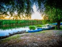 Delta Dunarii, grad de...