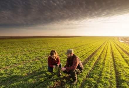 Dragnea anunta cresterea de subventii si reducerea TVA pentru legumicultori