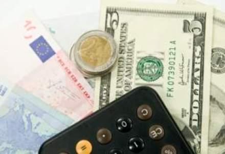 BNR a imprumutat 17 banci cu 4 mld. lei