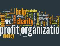 ONG-urile, sabotate de o...