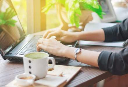 Joburi online sau cum sa faci bani de acasa: ce trebuie sa stii inainte de a-ti cauta un extrajob