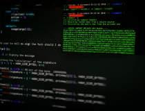 SRI: Hackerii care au atacat...