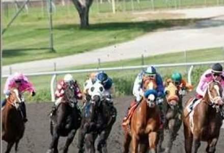 """HBO, dat in judecata pentru maltratarea unor cai in serialul """"Luck"""""""