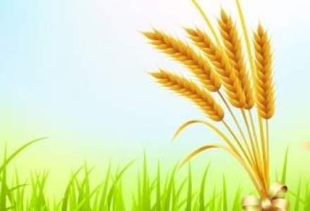 Romanii vor 17 mld. euro din fonduri europene pentru investitii in agricultura