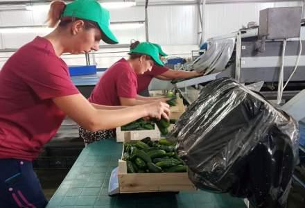 REPORTAJ: In vizita la fermierul care a revitalizat rosia copilariei noastre