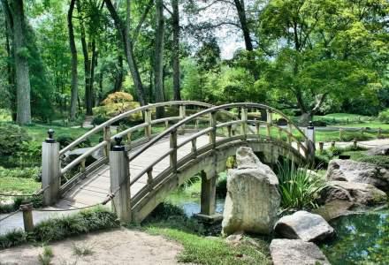 Sibiul va avea un nou parc, construit in locul unei gropi de gunoi