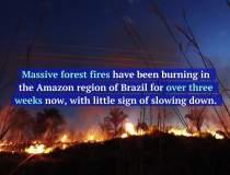 "Arde ""plamanul planetei"":..."