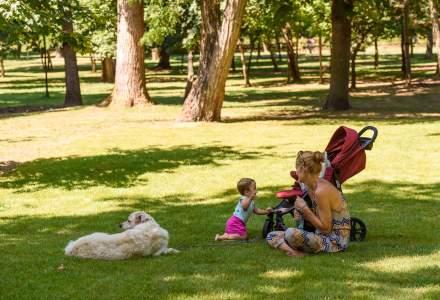 Parcul Central din Cluj, reamenajat pe cheltuiala Untold. Investitia se ridica la 1 milion de lei