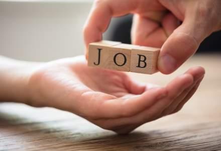 Joburi pe final de vara: poti alege din 28.000 de locuri de munca vacante