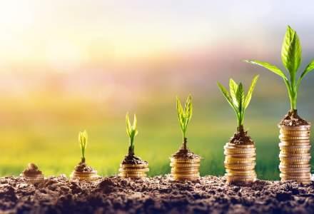 Romania pe locul doi dupa Turcia in clasamentul investitiilor atrase de la Fondul European pentru Europa de Sud-Est (EFSE) in 2018