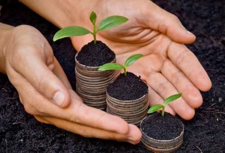 Agricultura la raport: top 10 cele mai mari companii din sectorul agricol