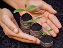 Agricultura la raport: top 10...