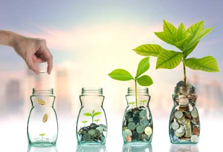 Cum sa iti investesti banii pentru efecte vizibile in timp