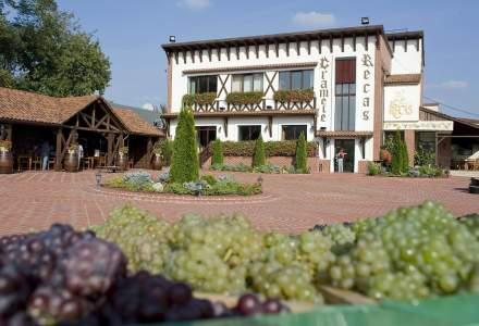 Cramele Recas obtine certificarea care atesta ca toate vinurile produse sunt vegane