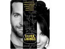 Silver Linings Playbook a...